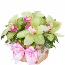 Анапа цветы доставка букеты